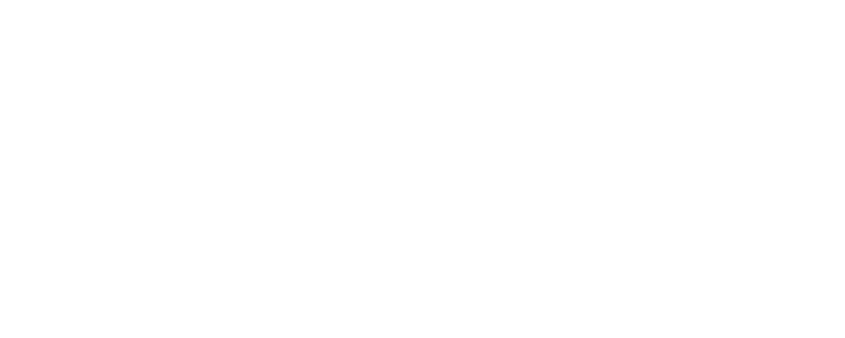 trailheaddirect_logo